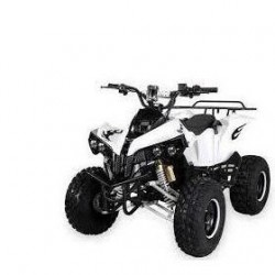Elektrická štvorkolka Warrior RS Exclusive 1200W 60V
