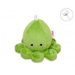 Chobotnica malá s hrkálkou