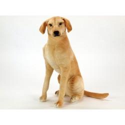 Plyšový pes Labrador, výška 83 cm